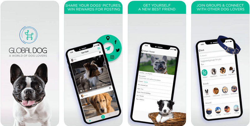 приложения для собак, Global Dog: For Dogs & Puppies