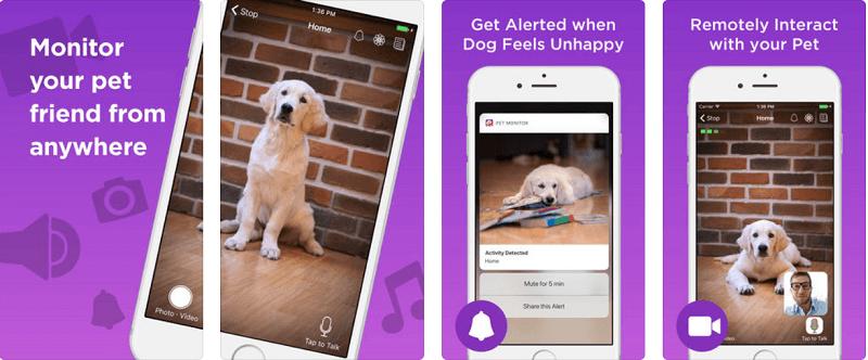 приложения о собаках, Pet Monitor