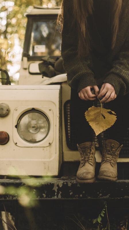 обои осень, обои лист