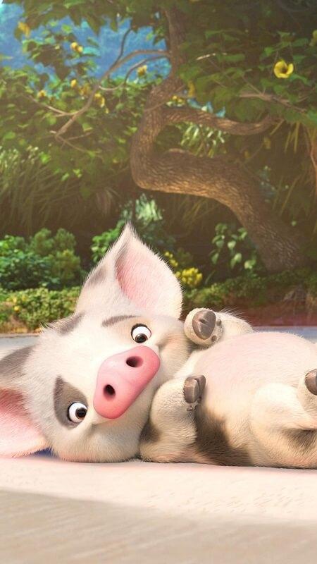 новогодние обои, обои свинья, обои кабан, обои поросенок