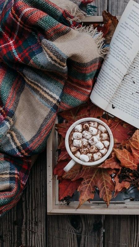 обои осень, обои кофе, обои плед